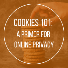 Cookies 101: A Primer for Online Privacy