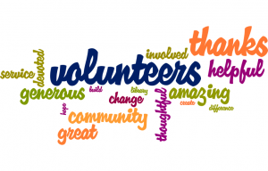 volunteerwordle