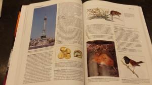 world book 2